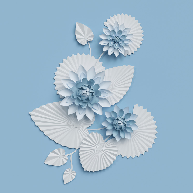 3d Render Paper Lotus Flowers Blue Wall Decoration Border White